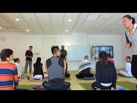 Shanghai Medical Yoga Workshop First Day Video Number 1