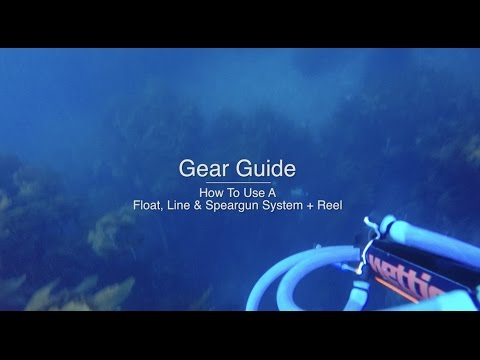 How To Use A Speargun, Float & Line System + REEL - Wettie TV- 'GEAR GUIDE'