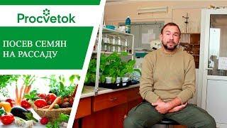 Подготовка семян к посеву. Секреты высокой всхожести и обильных урожаев.