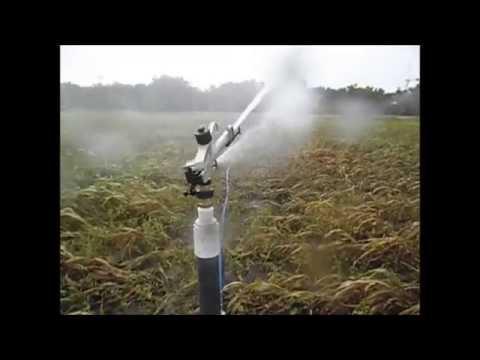 Sistema de riego por aspersion con bomba motor diesel - Tuberias de riego por goteo ...