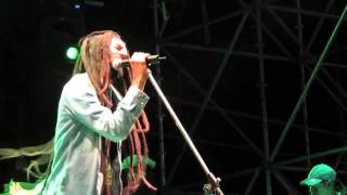 Cover images Julian Marley - Waiting in vain