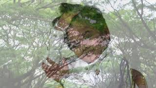 Velaikaran - Iraiva Song #Aatish_version