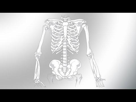 Schwingungspflaster bei Arthritis, Arthrose, Asthma