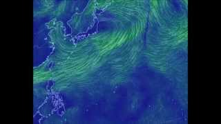 2014台風20号たまご