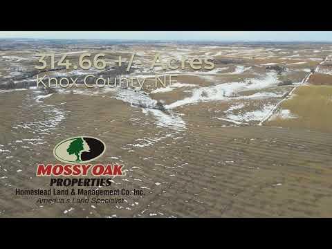 Land For Sale !  314.66 Acres +/- Knox County Nebraska