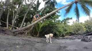 Shipman Beach, Puna, Big Island Hawaii Video