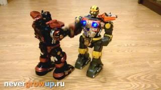 Битва роботів BBT - бій роботів на радіоуправлінні