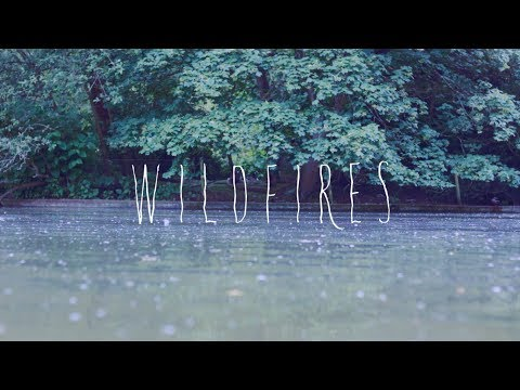 Wildfires (2014)