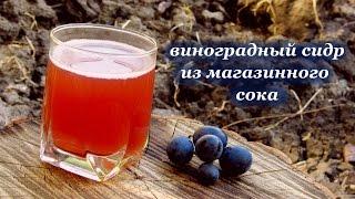 Виноградный сидр из магазинного сока