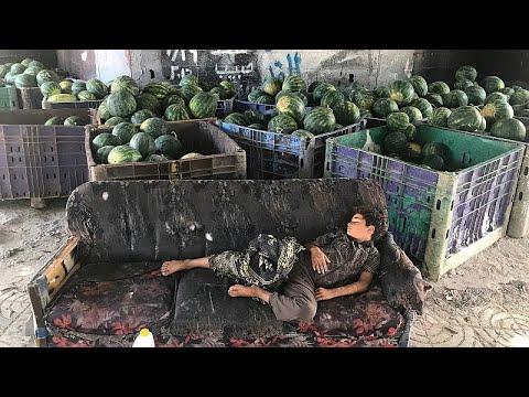 O efeito devastador do bloqueio na economia da Faixa de Gaza