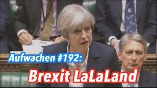 Aufwachen Podcast #192: Harter oder softer Brexit, noch mehr Krieg & Klima vs. Kohle
