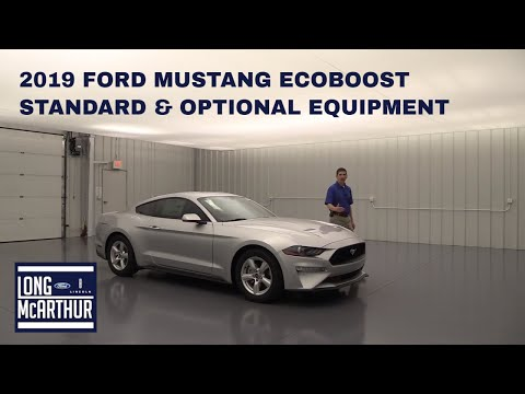 2019 FORD MUSTANG ECOBOOST STANDARD AND OPTIONAL EQUIPMENT