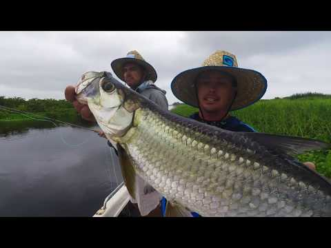 FLY FISHING For River TARPON With Wesley RAPSON And JUSTIN KEMP