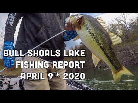 Bull Shoals Lake | Fishing Report | Early April 2020