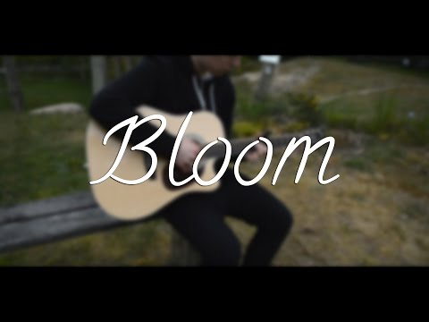 The Paper Kites - Bloom (Fingerstyle Guitar Cover)