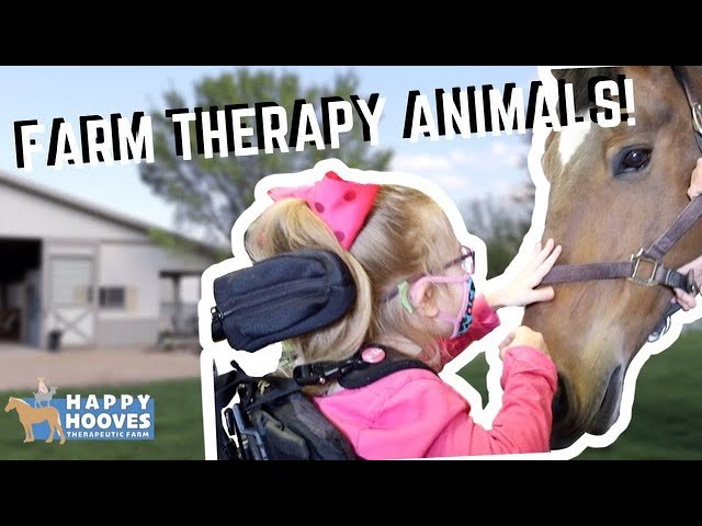 DAY IN THE LIFE | A VISIT AT THE THERAPY FARM