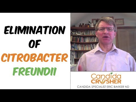 Best Diet For Elimination of Citrobacter Freundii