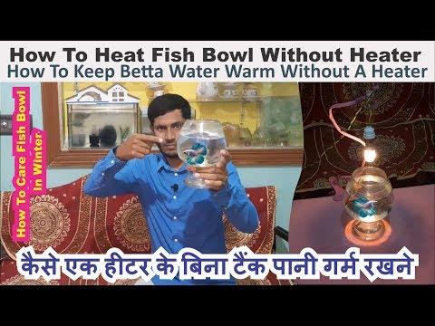How To Heat Fish Bowl Without Heater In Winter कैसे एक हीटर के बिना टैंक पानी गर्म  करे