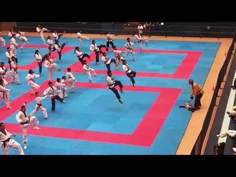 World Taekwondo Training Camp, La Loma Sport Center, Demo 2019