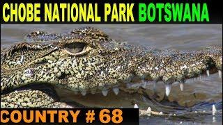 Chobe National Park, Botswana - A Day trip!