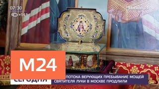 Смотреть видео Пребывание мощей святителя Луки в Москве продлили из-за потока верующих - Москва 24 онлайн