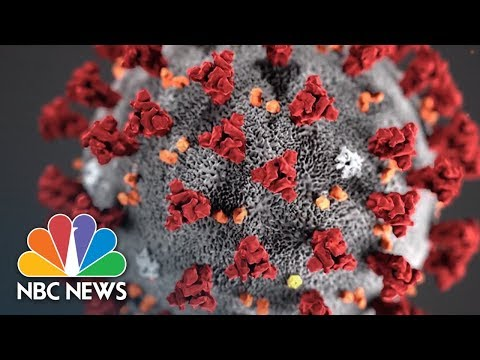 What You Should Know About The Coronavirus | NBC News NOW
