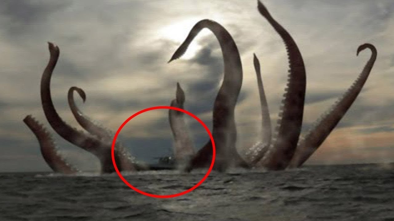Real KRAKEN Caught On CAMERA Spotted In Life