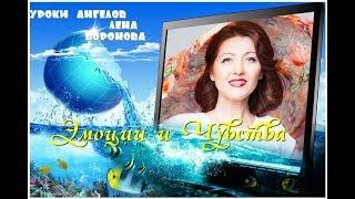 продолжение от 4 августа./Лена Воронова