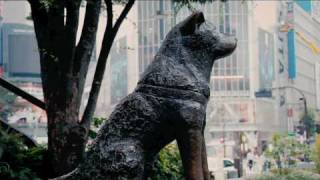 Hachiko Tribute 2010