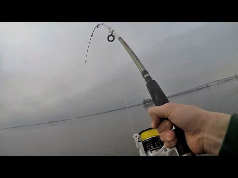 Fishing NEW Spots For Early Delaware River STRIPERS! (spring Run)