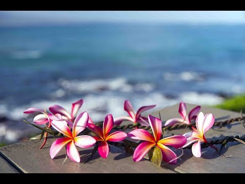 """Peaceful Music, Relaxing Music, Instrumental Music """"The Hawaiian Islands"""" by Tim Janis"""