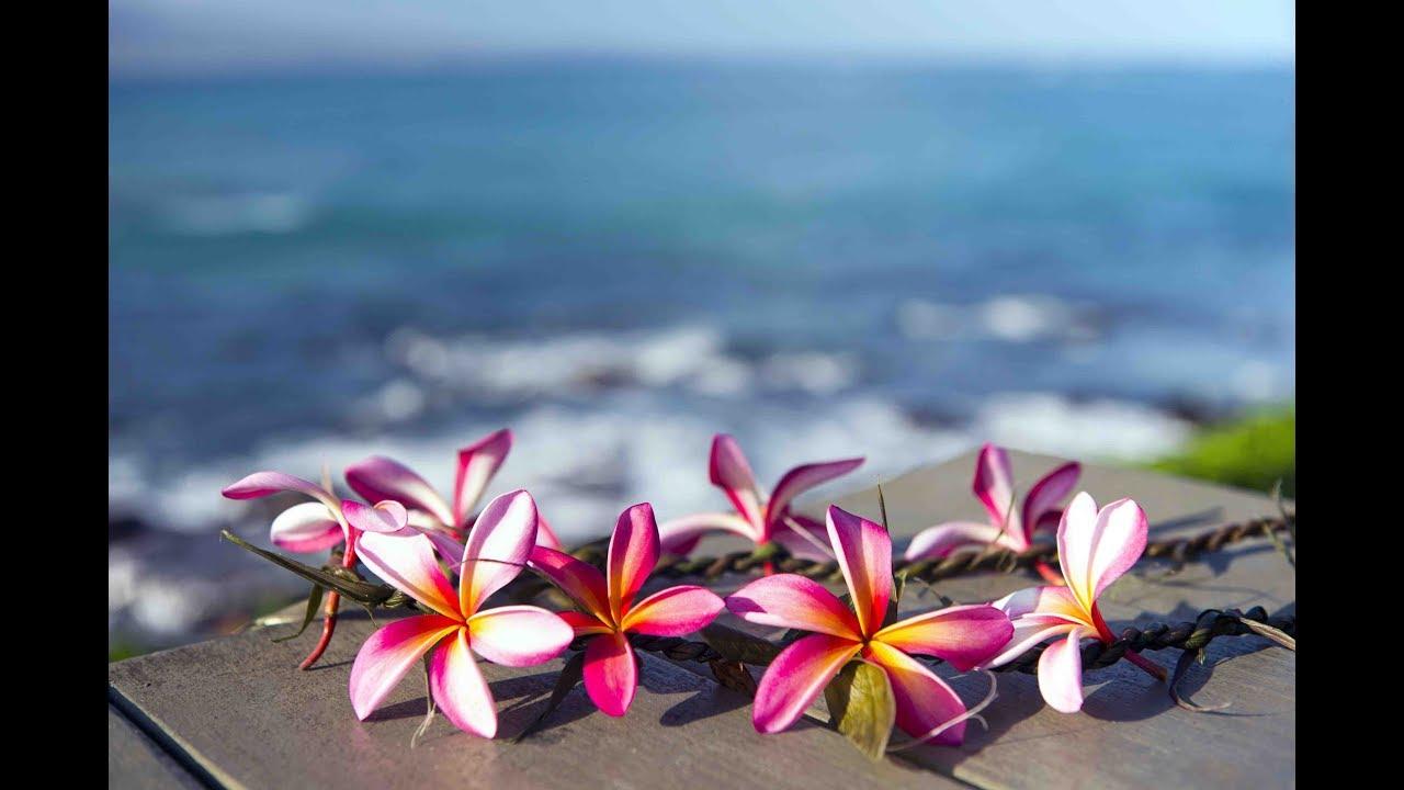Peaceful Music Relaxing Music Instrumental Music The Hawaiian