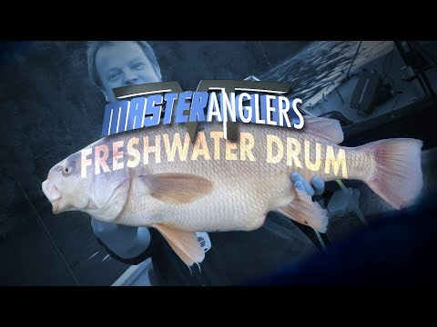 Catching Freshwater Drum [Sheepshead] In The Early Springtime - Vermont Master Anglers
