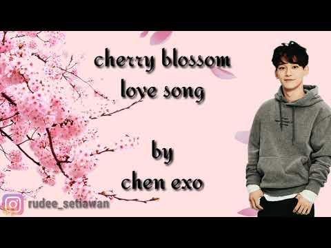cherry-blossom-love-song---chen-(exo)-(ost-100-days-my-prince)-lirik-&-terjemahan-indonesia