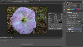 Agregar una marca de agua de derechos de autor PHOTOSHOP CS6
