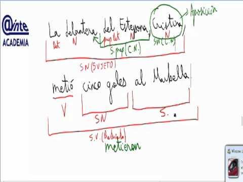 Sujeto Complemento Directo Indirecto Analisis Frases Morfosintaxis Ainte Lengua 3 Eso