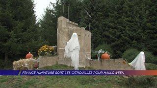 Yvelines | France Miniature sort les citrouilles pour Halloween