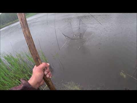 Рыбалка на ПАУК подъёмник на озере,САЗАН,КАРАСЬ