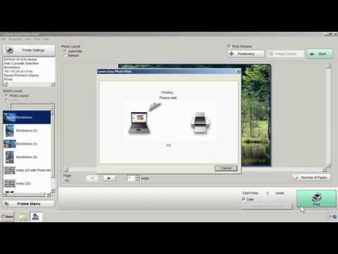 Вывод слива памперса на Epson XP 600, XP 605 Форум по СНПЧ