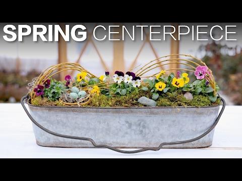 Spring Centerpiece // Garden Answer