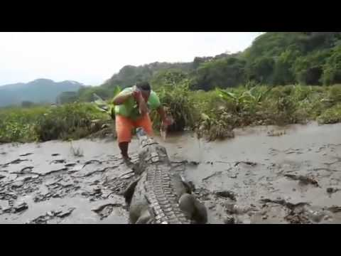 American trainer feed crocodile with his mouth