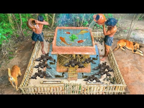 Building Mini Swimming Pool With Bamboo House For Ducks And Fish Pool