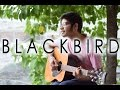 Blackbird Cover (Acoustic Sessions)