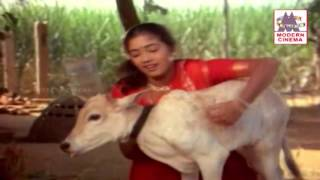 Senbagame Senbagame  Song | Ilaiyaraja |Enga Ooru Paatukaran செண்பகமே செண்பகமே
