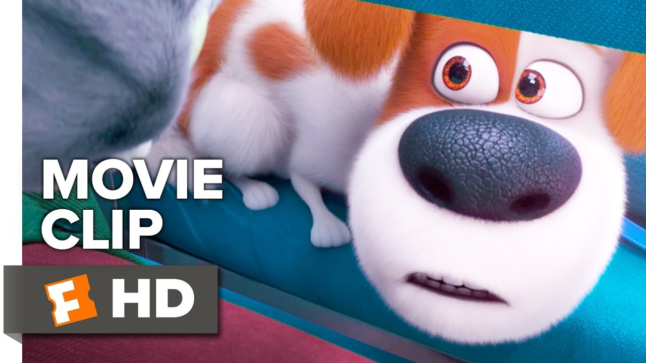 Download The Secret Life of Pets 2 Movie Clip - Max Meets Pets in the Vet (2019) | Movieclips Coming Soon