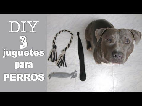 DIY 3 JUGUETES PARA PERROS SUPER FACILES Y RAPIDOS