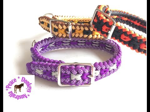 Adjustable dog collar - Modified Sanctified Square pattern paracord dog collar