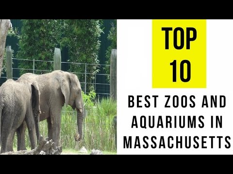 TOP 10. Best Zoos & Aquariums in Massachusetts: Family Holiday