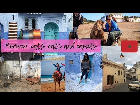 My weekend trip to Morocco!