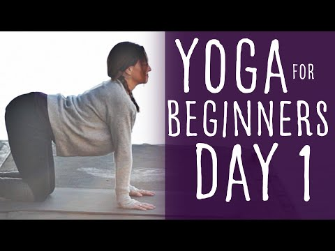 Yoga For Beginners 30 Day Challenge Day 1 With Fightmaster Yoga